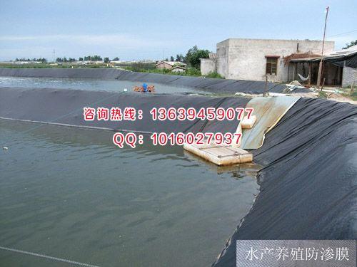 鱼塘养殖防渗膜_销售鱼塘养殖防渗膜18264817103