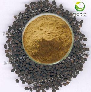 荷叶提取物,浓缩粉,QS药食同源,OEM固体饮料代加工