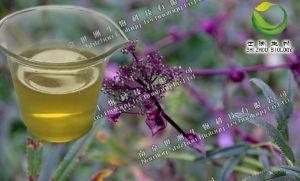 栀子提取物,浓缩粉 ,QS药食同源,OEM固体饮料代加工
