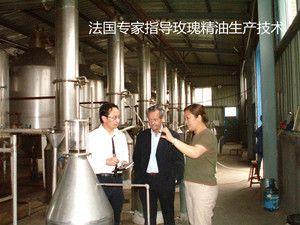 天然玫瑰精油厂家-济南惠农玫瑰精油-国内最大的玫瑰精油原料供应商