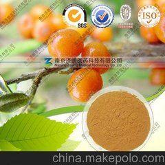 沙棘果粉 精细粉末 专业好品质 可代加工