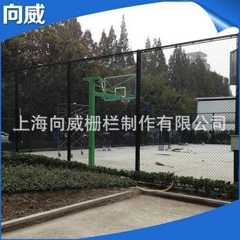 供应蓝球场防护网