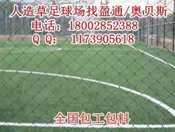 青州市沂南县五人制足球场人造草皮|足球草坪