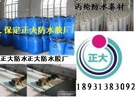 保定徐水正大防水胶厂的形象照片