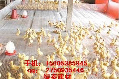 宿迁三维土工网养鸡网批发围栏网15805385945