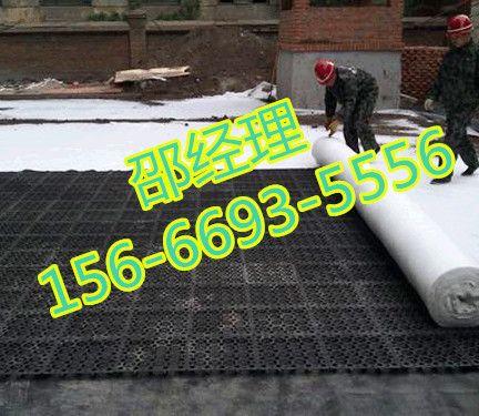 温州塑料排水板厂家