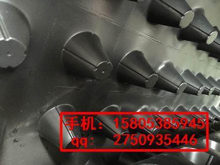 沧州6公分车库疏水板廊坊隔根排水板15805385945