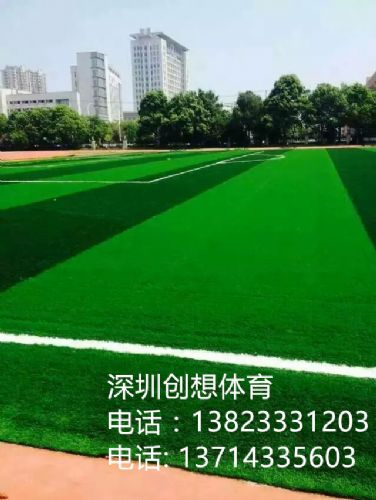 广东人造草施工创想体育运动场地铺设厂家