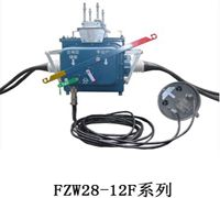 FZW28-12F真空负荷分界开关优惠价