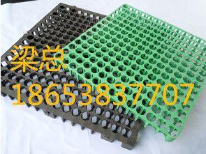 安庆蓄排水板∣排水板厂家