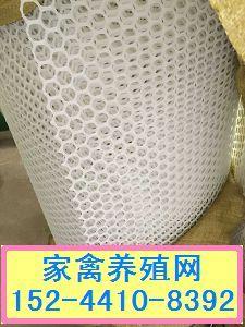 河南肉鸡养殖专用网价格★抗老化养鹅|养鸭专用塑料网