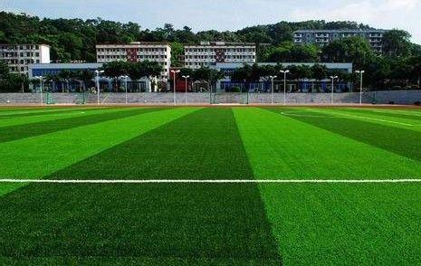 济南仿真草坪幼儿园学校人造塑料草坪足球场人工草皮