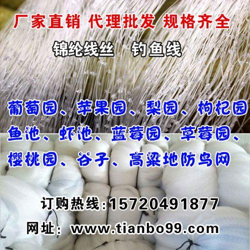 厂家批发葡萄园果树枸杞谷子苹果樱桃园单丝防鸟网