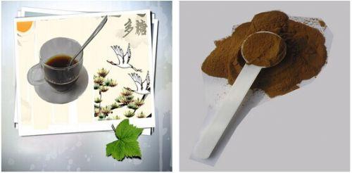 优质 猴头菇多糖 提取物 浓缩粉 可代加工