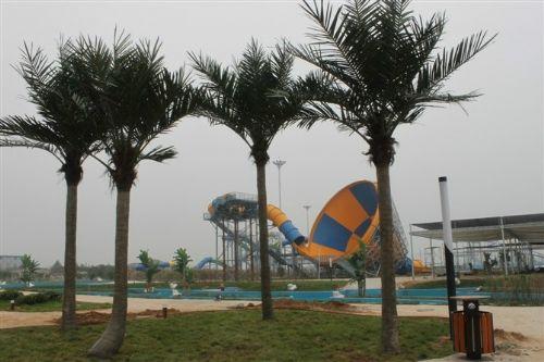 人造假树厂家专业设计逼真环保绿色仿真植物椰子树