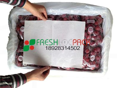 供应葡萄吸水纸 强密度吸水供应
