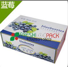 供应蓝莓包装箱 厂家商家订购