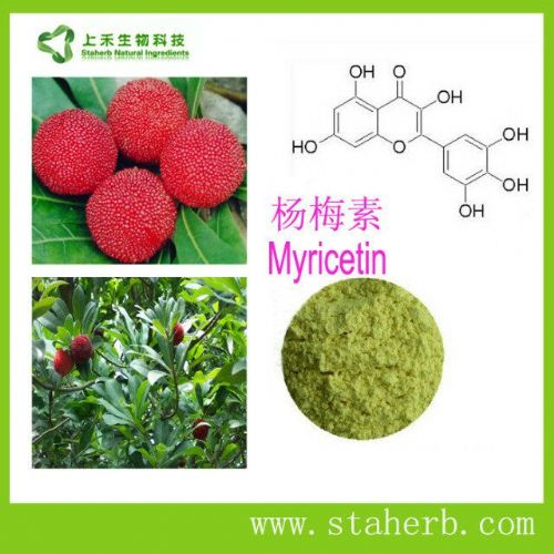 二氢杨梅素  Dihydromyricetin
