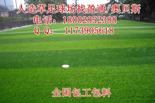 苏州市灌南县常熟市赣榆县仿真草坪地足球场加密仿真草坪足球场