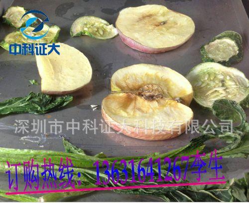 水果真空冷冻干燥机 深圳冷冻干燥机
