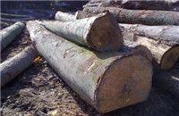 进口木材清关代理公司,非洲木材怎么运输到国内啊