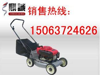 山东济宁鼎诚手推式割草机 便携式割草机 割草机价格 小型割草机