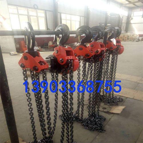 广东环链电动葫芦厂家-运行式环链电动葫芦防超载
