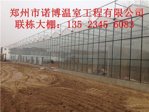玻璃温室工程 连栋温室大棚造价 温室大棚设计