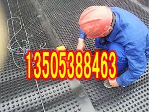 徐州车库顶板专用塑料排水板