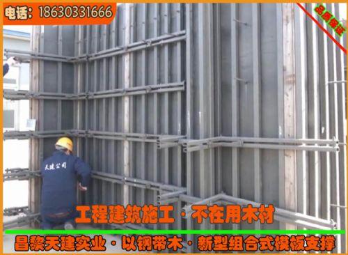 湖南住宅装配体系用新型剪力墙模板支撑可调节钢支撑