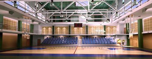 济南篮球场地专用PVC枫木纹运动地板、运动地胶 室内地胶