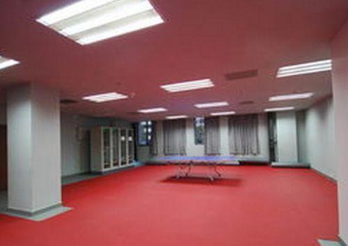 济南动地胶乒乓球地胶羽毛球地胶篮球场地胶荔枝纹PVC塑胶地板
