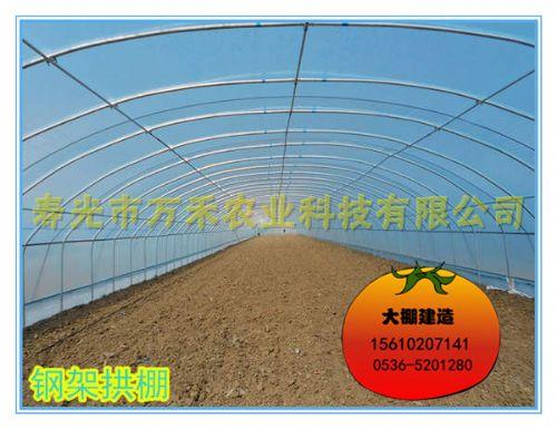 拱棚|全钢架无立柱拱棚|寿光市万禾农业科技有限公司