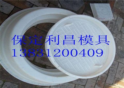 污水井盖塑料模具 井盖塑料模具